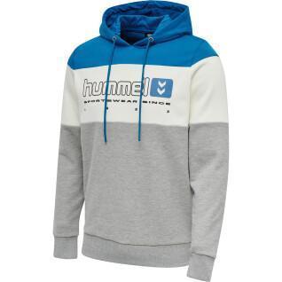 Hooded sweatshirt Hummel hmlLGC musa