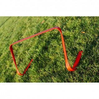 Hedge flexible Lynx Sport 30 cm