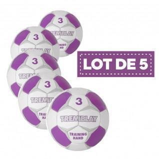 Set of 5 Tremblay training handballs